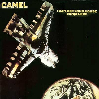 Camel I can see your house from here (320x320)
