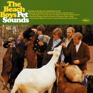 Beach boys pet sounds (320x320)