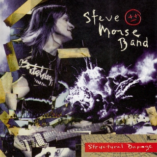Steve Morse Band structural damage (320x320)