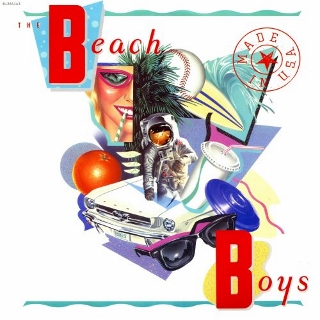 Beach boys made in USA (320x320)