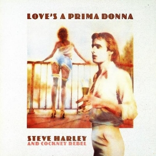 Steve Harley and Cockney Rebel (320x320)